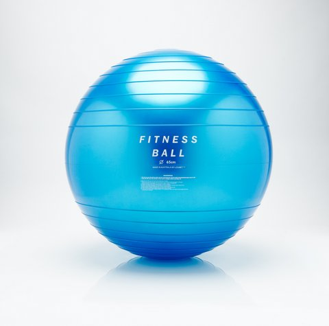 Loumet Fitness Ball Physio